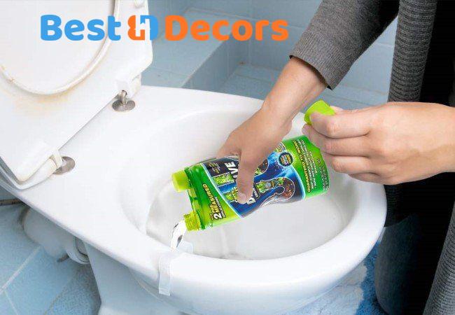 Best Drain Cleaner For Toilet