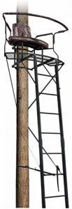 Big Dog BDL 2-man Ladder Stand