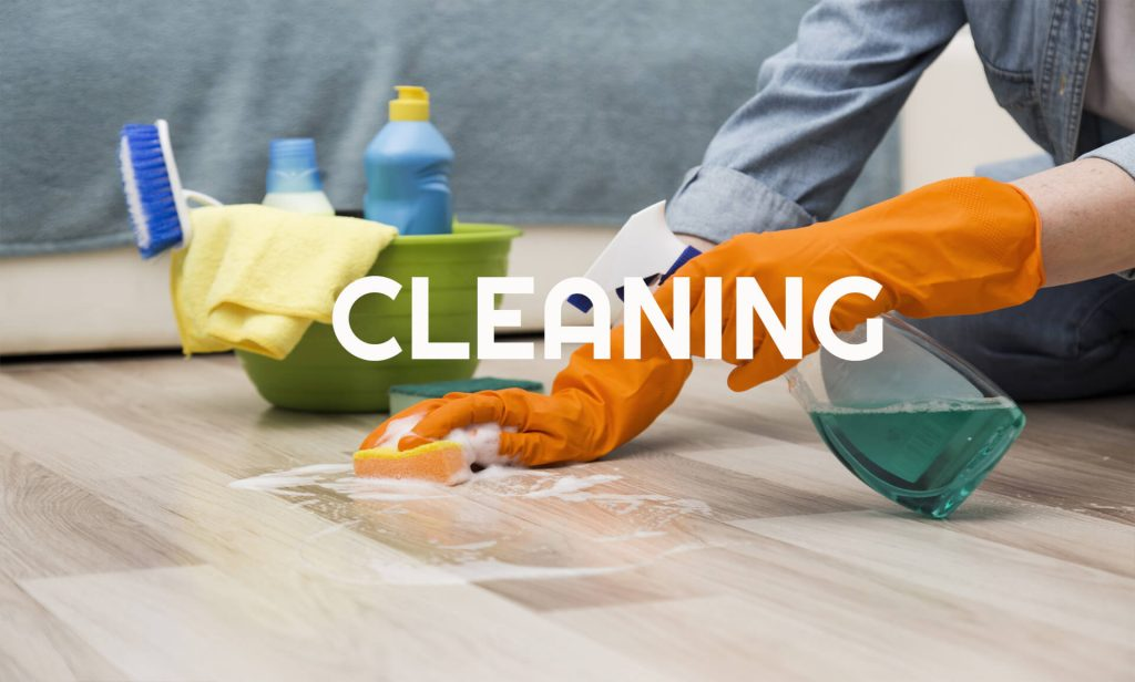 Cleaning Category